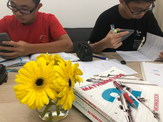 Sengkang Punggol Mathematics Tutor Small Group Tuition Centre for Secondary 1 Sec 1 Sec 2 Sec3 Sec4 Sec5 E Maths A Maths Additional Maths GCE O levels PSLE IGCSE eduKate Yishun