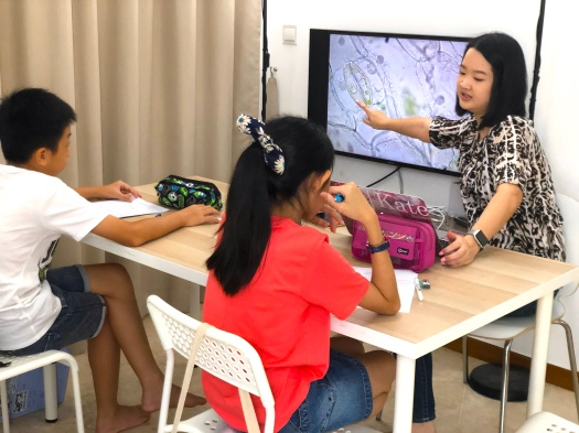 Yishun Primary Mathematics Tutor Small Group Tuition Centre for Secondary 1 Sec 1 Sec 2 Sec3 Sec4 Sec5 E Maths A Maths Additional Maths GCE O levels PSLE IGCSE eduKate Yishun Primary Maths Science PSLE English Pri 1 2 3 4 5 6 science tutor